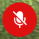 microphone icon in muted mode