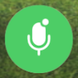 microphone icon in the green unmuted mode